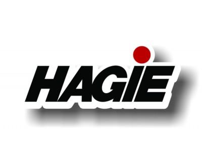 691249 Насос рабочей жидкости Hagie